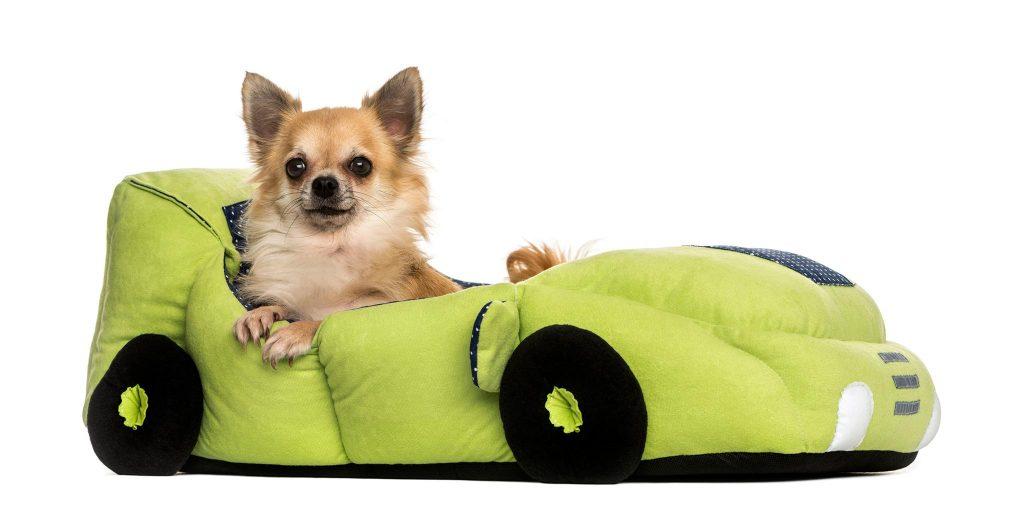 Ermäßigte Haustierprodukte